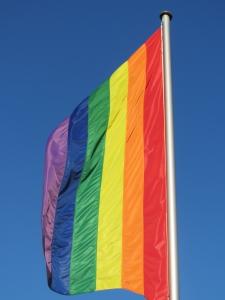 1392509_rainbow_flag.jpg